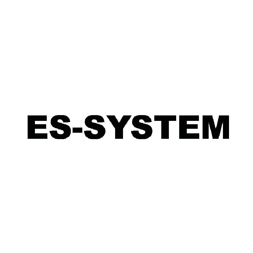 ES-System
